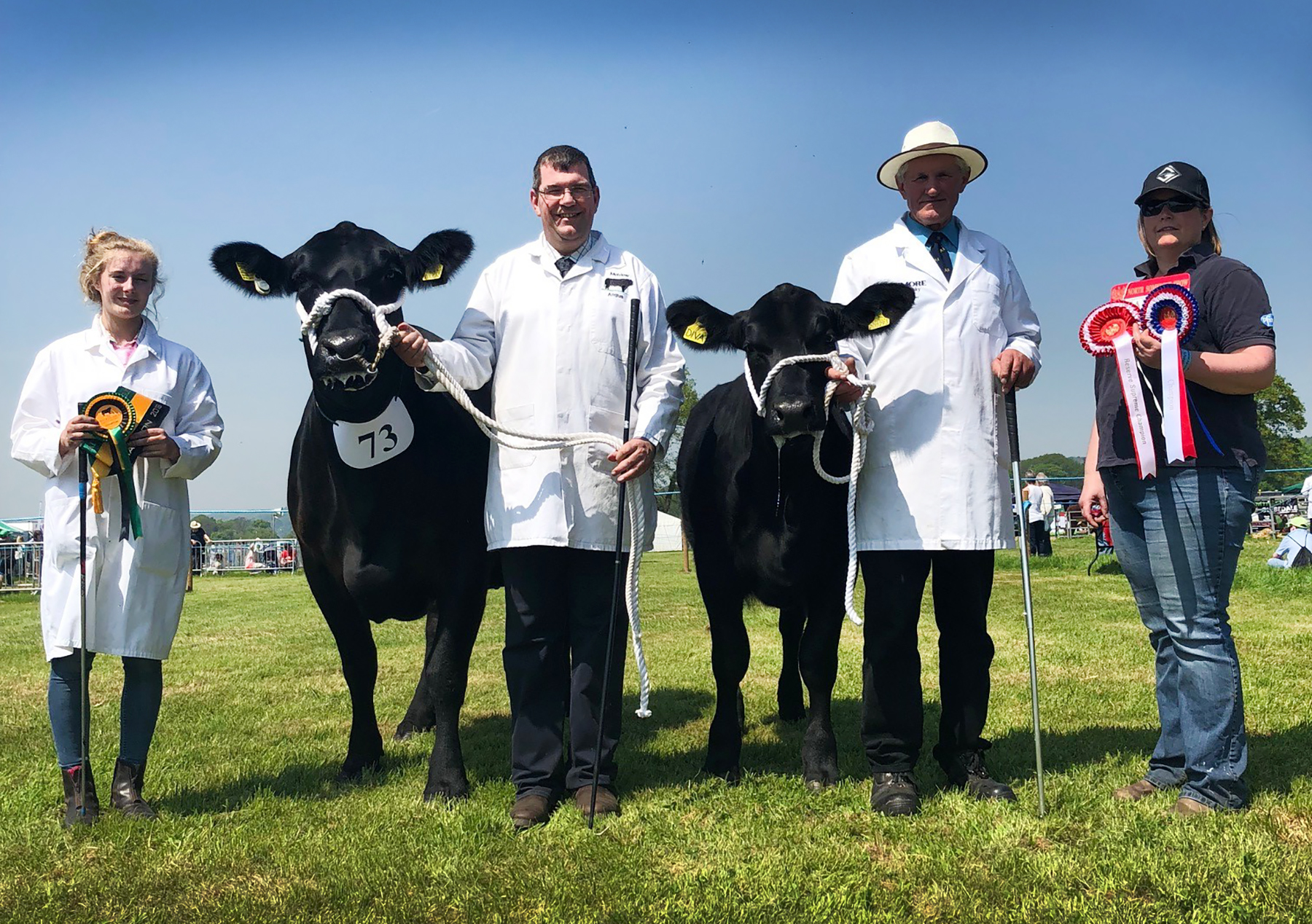 Melview on top form at North Somerset Show
