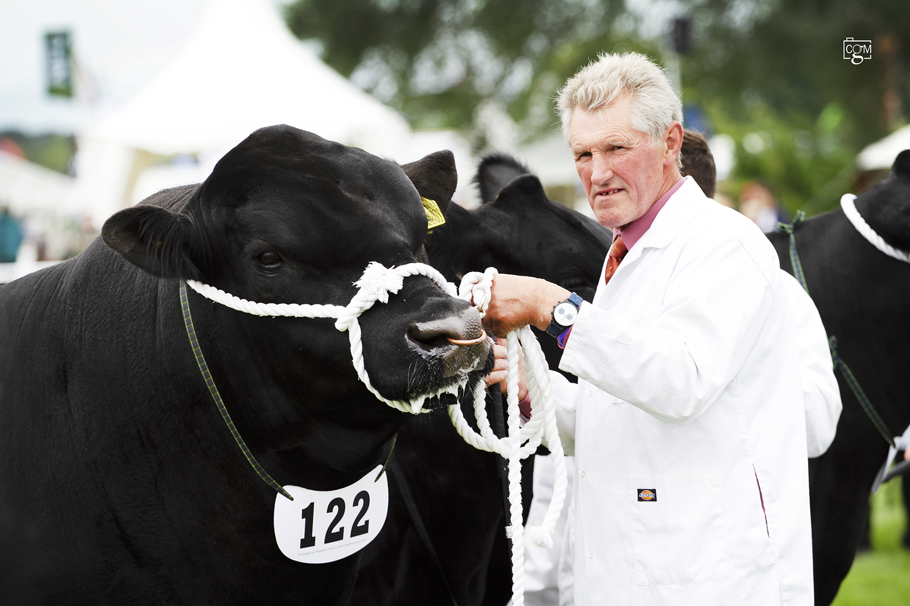 Interbreed success for Melview at Royal Three Counties Show